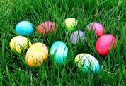 eggsgrass.jpg