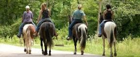 horsebackriding groupindex.jpg