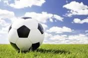 soccer ball grassindex.jpg