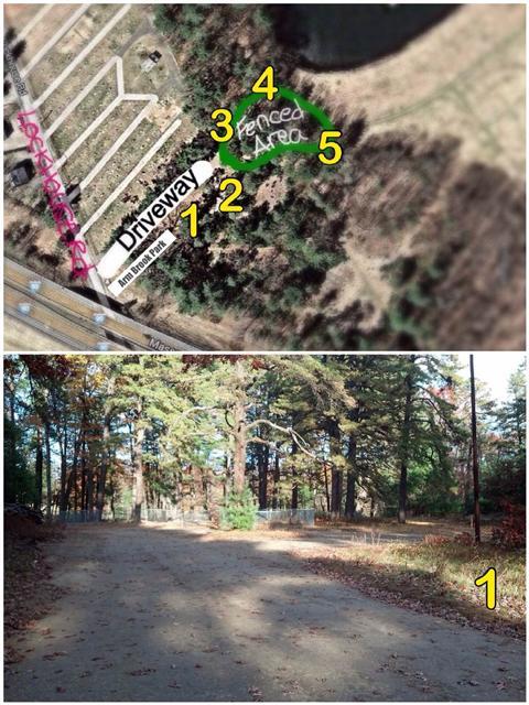 Fenced area dog park(1).jpg